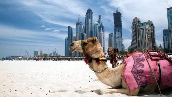 Rove Dubai Marina - 20 Popup navigation
